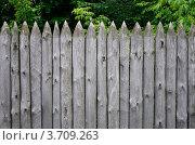 Старый деревянный забор. Стоковое фото, фотограф Андрей Артемьев / Фотобанк Лори
