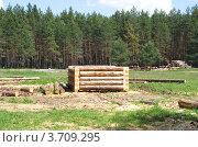 Купить «Строительство деревянного соснового сруба», эксклюзивное фото № 3709295, снято 21 июня 2012 г. (c) Елена Коромыслова / Фотобанк Лори