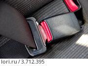 Купить «Ремень безопасности в автомобиле», фото № 3712395, снято 14 июля 2012 г. (c) Илюхина Наталья / Фотобанк Лори