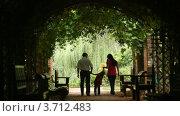 Купить «Силуэты родителей с ребенком идущих в растительном туннеле», видеоролик № 3712483, снято 7 сентября 2010 г. (c) Losevsky Pavel / Фотобанк Лори