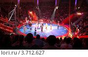 Купить «Артисты выходят на арену цирка», видеоролик № 3712627, снято 11 октября 2010 г. (c) Losevsky Pavel / Фотобанк Лори