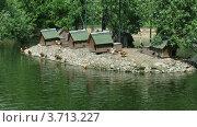 Купить «Островок с птицами в пруду в зоопарке», видеоролик № 3713227, снято 20 сентября 2010 г. (c) Losevsky Pavel / Фотобанк Лори