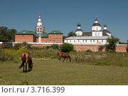 Купить «Рыльский Свято-Николаевский мужской монастырь», фото № 3716399, снято 31 июля 2012 г. (c) Эдуард Киселёв / Фотобанк Лори