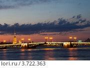 Санкт-Петербург.  Дворцовый мост (2012 год). Редакционное фото, фотограф Литвяк Игорь / Фотобанк Лори
