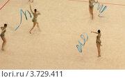 Купить «Гимнастки с лентами на XXX Чемпионате мира по художественной гимнастике», видеоролик № 3729411, снято 12 декабря 2010 г. (c) Losevsky Pavel / Фотобанк Лори
