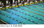 Купить «Чемпионат России по плаванию», видеоролик № 3729955, снято 18 марта 2011 г. (c) Losevsky Pavel / Фотобанк Лори