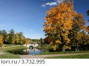 Павловский парк (2008 год). Редакционное фото, фотограф Vladimir Pen / Фотобанк Лори
