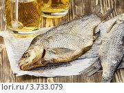 Закуска к пиву. Вяленая рыба - вобла, лещ. Стоковое фото, фотограф Ирина Завьялова / Фотобанк Лори