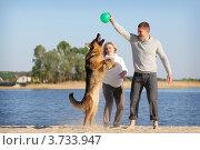 Купить «Беременная девушка с мужем играют с собакой на берегу», фото № 3733947, снято 3 мая 2012 г. (c) Ольга Дмитриева / Фотобанк Лори
