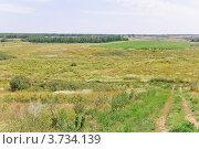 Купить «Донская степь», эксклюзивное фото № 3734139, снято 29 июля 2012 г. (c) Алёшина Оксана / Фотобанк Лори