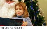 Купить «Девочка сидит на коленях у деда Мороза», видеоролик № 3738531, снято 26 мая 2007 г. (c) Losevsky Pavel / Фотобанк Лори