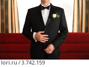 Жених в черном костюме с бабочкой и бутоньеркой. Стоковое фото, фотограф Александр Довянский / Фотобанк Лори