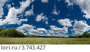 Купить «Летний луг, пейзаж», фото № 3743427, снято 2 июня 2012 г. (c) Максим Пименов / Фотобанк Лори