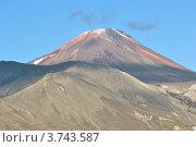 Купить «Авачинский вулкан. Камчатка», фото № 3743587, снято 11 августа 2012 г. (c) Владимир Карпов / Фотобанк Лори