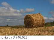 Тюк золотистой соломы на фоне голубого неба. Стоковое фото, фотограф Александр Кондрушенко / Фотобанк Лори