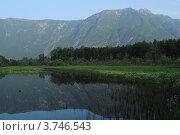 Вид на гору Алтын-Туу. Стоковое фото, фотограф Олег Брагин / Фотобанк Лори