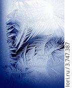 Купить «Морозный узор на стекле», фото № 3747387, снято 14 ноября 2018 г. (c) ElenArt / Фотобанк Лори