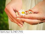 Обручальные кольца в руках невесты. Стоковое фото, фотограф Алексей Казнадей / Фотобанк Лори
