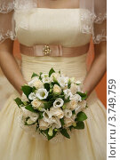 Купить «Свадебный букет невесты», фото № 3749759, снято 25 февраля 2012 г. (c) Журавлева Виктория / Фотобанк Лори