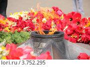 Цветы около вечного огня (2012 год). Редакционное фото, фотограф Елена Таранец / Фотобанк Лори