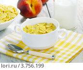 Купить «Кукурузные хлопья, молоко и персики», фото № 3756199, снято 29 июля 2012 г. (c) Надежда Мишкова / Фотобанк Лори