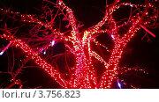 Купить «Дерево, украшенное разноцветными лампочками, на фоне автомобильной дороги», видеоролик № 3756823, снято 10 ноября 2011 г. (c) Losevsky Pavel / Фотобанк Лори