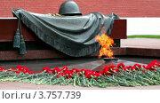 Купить «Вечный огонь на могиле Неизвестного солдата», видеоролик № 3757739, снято 8 декабря 2011 г. (c) Losevsky Pavel / Фотобанк Лори