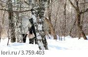 Купить «Бабушка и дедушка идут через лес», видеоролик № 3759403, снято 10 сентября 2011 г. (c) Losevsky Pavel / Фотобанк Лори