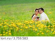 Жених и невеста с бокалами вина в руках сидят в поле желтых одуванчиков. Стоковое фото, фотограф Алексей Казнадей / Фотобанк Лори