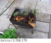 Купить «Дачный быт - сжигание мусора на мангале», эксклюзивное фото № 3768179, снято 2 июля 2012 г. (c) lana1501 / Фотобанк Лори