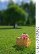 Букет роз и корзина для пикника на фоне летнего пейзажа. Стоковое фото, фотограф Алексей Казнадей / Фотобанк Лори