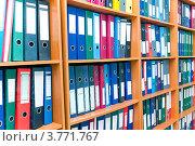 Купить «Полки с папками», фото № 3771767, снято 1 июня 2012 г. (c) Юрий Плющев / Фотобанк Лори