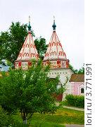 Купить «Город Суздаль, Святые ворота Ризоположенского монастыря», фото № 3771991, снято 7 июня 2011 г. (c) ElenArt / Фотобанк Лори