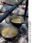 Купить «Плов, готовящийся в казанах на костре», фото № 3773223, снято 20 июля 2012 г. (c) Юлия Батурина / Фотобанк Лори