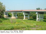 Купить «Город Ишим. Автомобильный мост через реку Ишим», фото № 3773707, снято 30 июня 2012 г. (c) Александр Тараканов / Фотобанк Лори