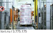 Купить «Упакованные бутылки с йогуртом на конвейере», видеоролик № 3775175, снято 29 декабря 2011 г. (c) Losevsky Pavel / Фотобанк Лори