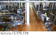Молочный завод. Стоковое видео, видеограф Losevsky Pavel / Фотобанк Лори