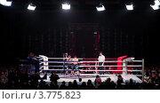 Купить «Два спортсмена борются на ринге. Московская битва 3», видеоролик № 3775823, снято 11 января 2012 г. (c) Losevsky Pavel / Фотобанк Лори
