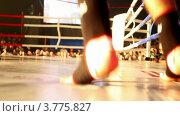 Купить «Боксер двигается на ринге, акцент на ногах», видеоролик № 3775827, снято 30 декабря 2011 г. (c) Losevsky Pavel / Фотобанк Лори