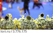 Купить «Несколько призовых кубков на фоне людей и их собак на конкурсе», видеоролик № 3776175, снято 16 февраля 2012 г. (c) Losevsky Pavel / Фотобанк Лори