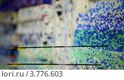 Купить «Черные стрелы попадают в полосатые мишени», видеоролик № 3776603, снято 15 января 2012 г. (c) Losevsky Pavel / Фотобанк Лори