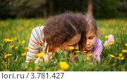Купить «Мама с дочкой лежат на лужайке в лесу среди желтых одуванчиков», видеоролик № 3781427, снято 30 июля 2012 г. (c) Losevsky Pavel / Фотобанк Лори
