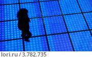 Купить «Женщина кружится в танце в темноте дискотеки», видеоролик № 3782735, снято 7 июня 2012 г. (c) Losevsky Pavel / Фотобанк Лори
