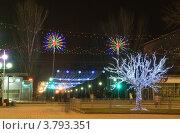 Светящееся дерево (2010 год). Стоковое фото, фотограф Владимир Гуторов / Фотобанк Лори