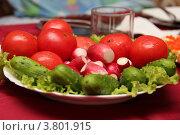 Овощи на столе. Стоковое фото, фотограф Елена Таранец / Фотобанк Лори