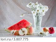 Купить «Натюрморт символизирующий лето и плодородие», фото № 3807775, снято 31 августа 2012 г. (c) Татьяна Макотра / Фотобанк Лори