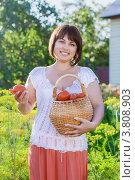 Купить «Красивая брюнетка с корзиной помидоров в огороде», фото № 3808903, снято 18 июля 2018 г. (c) Майя Крученкова / Фотобанк Лори