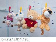 Веселые игрушки сушатся в ванной комнате (2012 год). Редакционное фото, фотограф Чукин Дмитрий / Фотобанк Лори