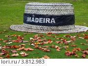 Купить «Мадейра. Сантана. Парковая скульптура - шляпа отпускника - символ отдыха, туризма и путешествий на тропическом острове», фото № 3812983, снято 24 декабря 2011 г. (c) Виктория Катьянова / Фотобанк Лори