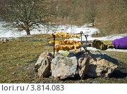 Барбекю среди снега. Весенний пикник. Стоковое фото, фотограф Наталья Райхель / Фотобанк Лори